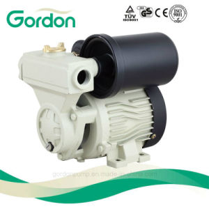 Gardon Electric Brass Impeller Clean Water Pump with Spare Parts pictures & photos