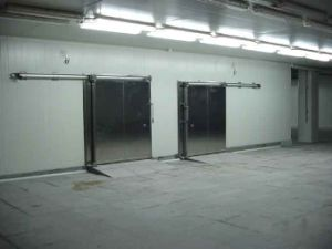 Walk in Freezer Room with Food Level pictures & photos