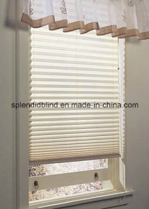 38mm Roller Verman Blinds (SGD-R-3130) pictures & photos