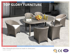 Outdoor Dining Table Chair (TG-1610) pictures & photos