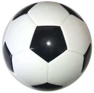 TPU Soccer Ball (MS-S5-CR06)