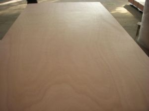 Marine Plywood with BS1088 Cetification pictures & photos