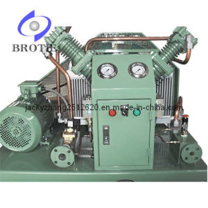 Carbon Dioxide Gas Compressor (BRC-CO2) pictures & photos