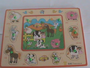 Wooden Toys - Wooden Jigsaw Puzzle Series (DSC00781)
