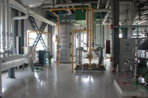 20tpd Sunflower Seeds Edible Oil Mill (5-500TPD) pictures & photos