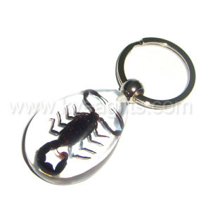 Real Black Scorpion Crystal Key Ring