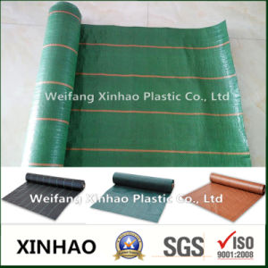 2017 Hot Sale Weed Mat with 100GSM pictures & photos