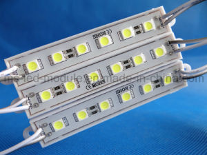 SMD 5050 6LED LED Module Waterproof DC12V White pictures & photos