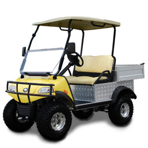 Electric Utility Cart (DEL2023DUBS, 2-Seater) pictures & photos
