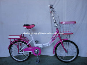 Purple Women Bicycle with Good Quality (SH-CB119) pictures & photos