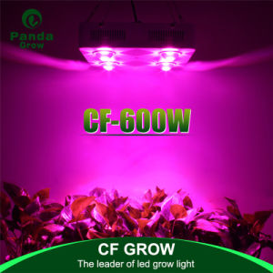 High Power High Lumen 600W Full Spectrum LED Grow Light Bridgelux COB pictures & photos