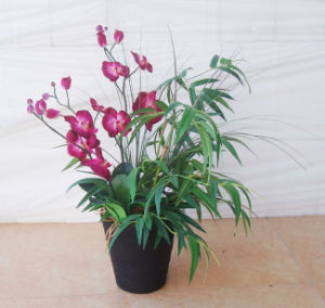 Artificial Orchid Flowers Potted