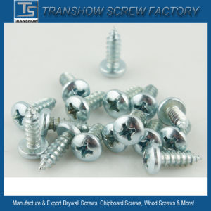 3.5-6.3mm Pan Head, Pan Framing Head Self Tapping Screw pictures & photos