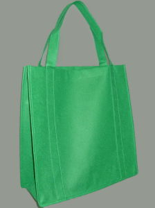 Shopping Bag (XT-B050) pictures & photos