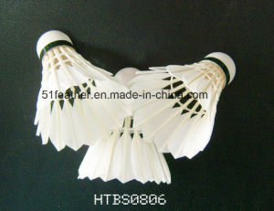 Goose/Duck Feather Badminton Shuttlecocks for Social Group, Training and School Use pictures & photos