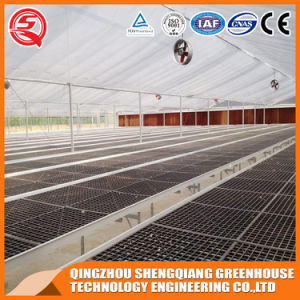 Agriculture Indoor Growing Tent Plastic Film Greenhouse pictures & photos