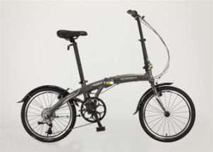 Hot Sale Aluminum Frame 6speed Folding Bicycle (FP-FDB-D010) pictures & photos