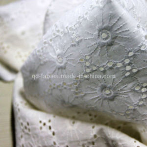 Cotton Lawn Border Embroidery Fabric (QDFAB-111068-9) pictures & photos