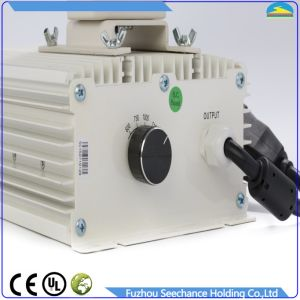 High Power HID Grow Light 600W, 1000W Ballast Fixture pictures & photos
