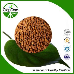 Hot Sell Granular Organic Fertilizer NPK pictures & photos