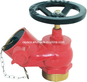 Fire Hose Landing Valve Sng. pictures & photos