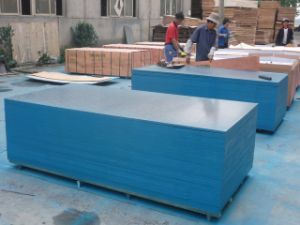 Blue Eage Imprinted Film Faced Plywood pictures & photos