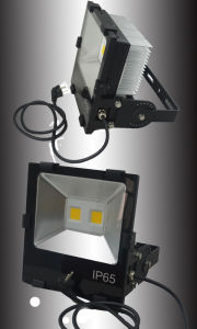 LED COB 100W Spotlights for Outdoor Garden or Building Light pictures & photos