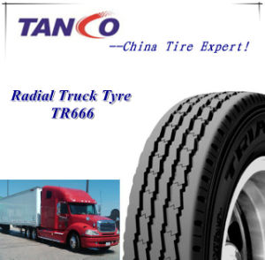 Rib Pattern Truck Tire, Bus Tire (11R22.5 11.00R20 10.00R20) pictures & photos