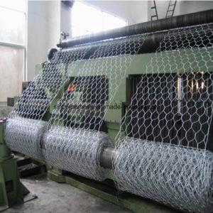 High Quality Galvanized Hexagonal Wire Netting