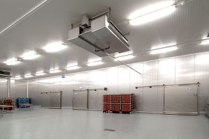 Cold Storage Room for Vegetable Warehouse pictures & photos