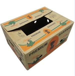Custom Print Strong Fruit Cardboard Box pictures & photos