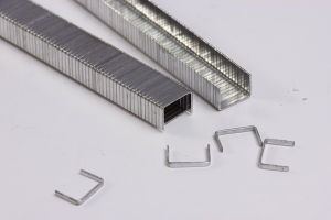 Industrial Wire Staple (A11 Staple) pictures & photos