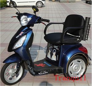 Electric Mobility Scooter (AG-ETP09)