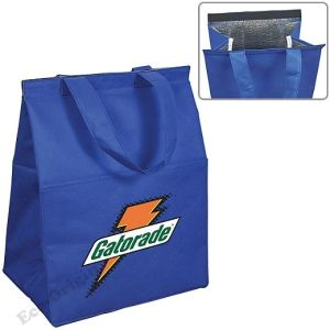 Non Woven Insulated Grocery Cooler (EOB-24)