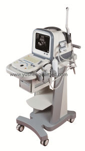 Ce Approved PC Based Digital Ultrasound System Ultrasonic Scanner pictures & photos