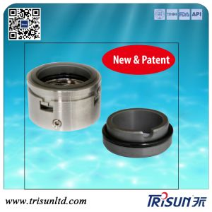 Mechanical Seal, Vortex Pump Seal, Burgmann H75, Multi-Spring Seal pictures & photos