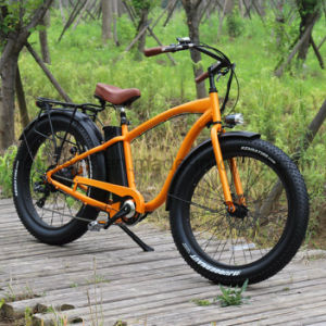 500W Electric Bicycle with 8fun Motor pictures & photos