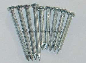 Electronic Galvanized Stainless Concrete Nail pictures & photos