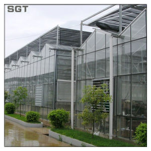 4mm Low Iron/ Clear Patterned Ar Diffusing Greenhouse Glass pictures & photos