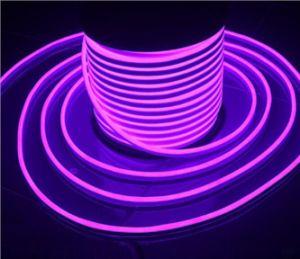 LED Neon Flex pictures & photos
