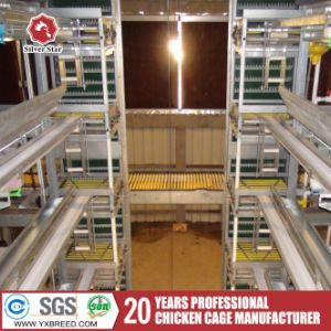 Cheap Broiler Cage for Nigeria Sale of Full Parts Offered pictures & photos
