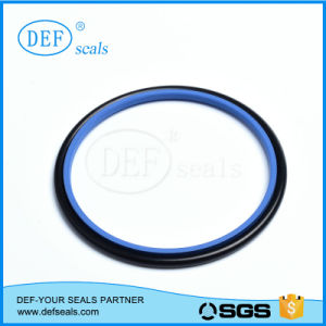 Leading Product Hydraulic PTFE Rod Seal pictures & photos