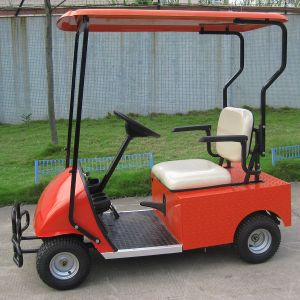 1 Seater Cheap Electric Golf Cart Dg-C1 with CE Certificate From China pictures & photos