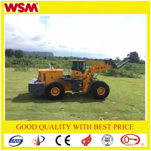 Block Handler Arrangement Wsm973t32-I as Well as Caterpillar pictures & photos