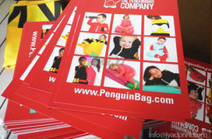 High Quality 300GSM Art Paper Promotion Flyers / Advertising Flyer pictures & photos