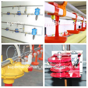 Automatic Complete Set Poultry Equipment for Poultry Farming House pictures & photos
