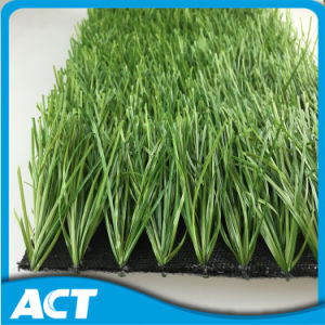 Outdoor Football Artificial Grass with 50mm Height W50 pictures & photos