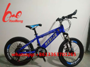 20inch, 24inch Suspension Mountain Bike/Bicycle/MTB pictures & photos