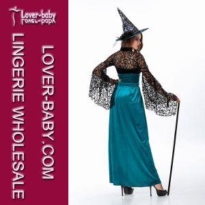 Fancy Adult Costume Lingerie (L1045) pictures & photos