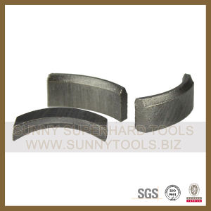 Diamond Roof Segment for Core Drilling pictures & photos